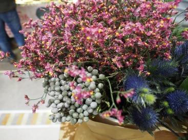 Dries Flowers